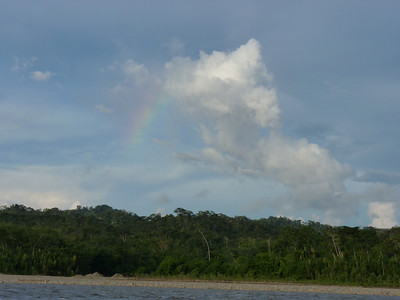 Rainbow over the rainforest from the boat