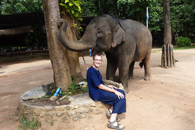 Just hanging out with an elephant